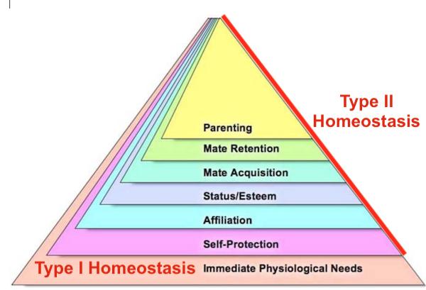 NEW Needs Pyramid